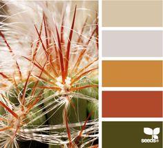 Color: Cactus Color by Design Seeds - beige, light purple, deep gold, russet, khaki green.