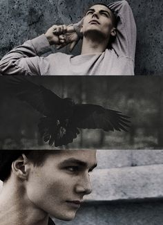 Anatomy of the Raven Cycle Legend: Ronan Lynch: The Greywaren: Morgan Le Fey