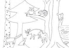 schablonen-2/Ausmalen-Tiere-im-Wald