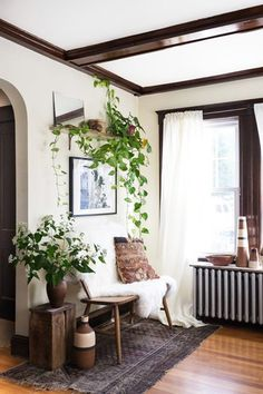Climbing Plants - Pinterest Predicts The Top Home Trends Of 2017 - Photos