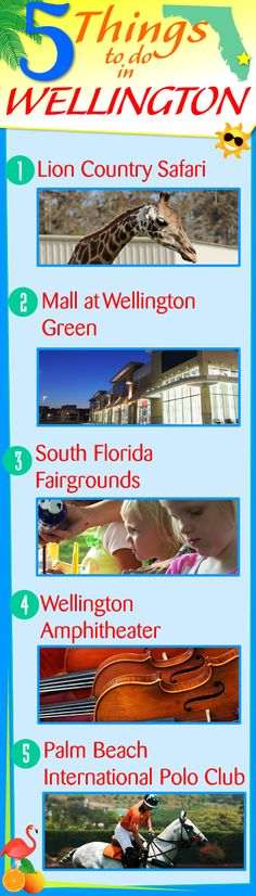 5 Things to do Wellington, FL: 1.) Mall at Wellington Green 2.) Lion Country Safari 3.) South Florida Fairgrounds 4.) Palm Beach International Polo Club 5.) Wellington Amphitheater #wellingtonflorida #wellingtonfl #wellingtonfl