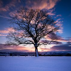 This photo was taken on December 2, 2010 in Otley, England, GB, using a Canon EOS 5D Mark II.