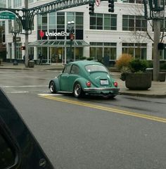 Cali bug in Everett