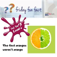 """The original oranges from Southeast Asia were a tangerine-pomelo hybrid, and they were actually green. In fact, oranges in warmer regions like Vietnam and Thailand still stay green through maturity. For more interesting facts, find out which """"orange"""" came first: the color or the fruit.  #fridayfunfact #oranges #fun #facts    #TheTomHallGroup #KWElite #KellerWilliamsRealty  Credits: www.rd.com"""