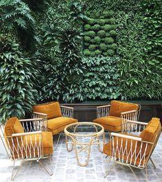 rotan stoelen, okergele fluwelen kussens en heel veel groen. wat een verrassende combinatie voor in de tuin.
