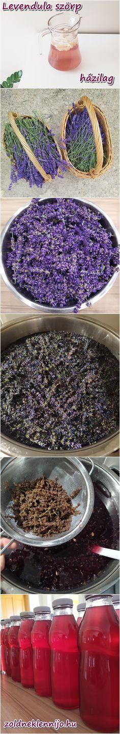 A levendula virágából mennyei szörpöt lehet készíteni, tartósítószer nélkül is. Ha szereted az illatát, az ízét is imádni fogod. Cooking, Kitchen, Brewing, Cuisine, Cook