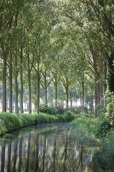 Damme, West Vlaanderen, Belgium by drhenkenstein