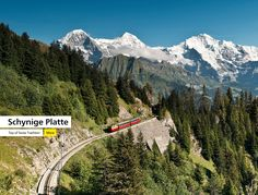 Jungfrau - Top of EuropeTourism