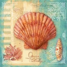 Portfolio Canvas Decor 'Ocean Nautilus' by Geoff Allen Wrapped and Stretched Canvas Wall Art Set, 12 x Set of 4 Seaside Shops, Sea Pictures, Nautical Pictures, Decoupage Printables, Decoupage Paper, Shell Art, Beach Scenes, Wall Art Sets, Beach Art
