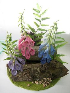 foxglove & fern by salon J, via Flickr