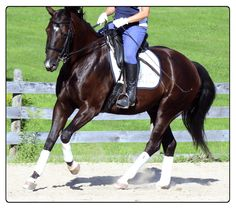 Help your horse through the turn
