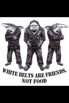 BJJ PIC: A Black belt is a white belt that never gave up. So remind all the sharks in your gym: white belts should not be devoured. Martial Arts Humor, Martial Arts Quotes, Martial Arts Workout, Aikido, Artiste Martial, Martial Artist, Karate, Taekwondo, Ufc