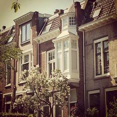 Nice balcony on a sunny day in Burgemeesterswijk,  Arnhem