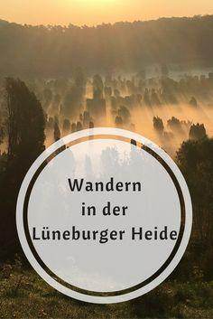 Wanderung in der Lüneburger Heide zum Sonnenaufgang am Totengrund, einer der schönsten Fotospots in Norddeutschland