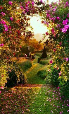 Pettifers Garden in North Oxfordshire, England