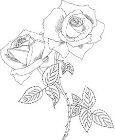 Tropicana Hybrid Tea Rose coloring page