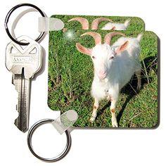 Taiche Photography - Farm Animals Goat - Key Chains - set... https://www.amazon.com/dp/B0055UHV5W/ref=cm_sw_r_pi_dp_903AxbBKSNF2V