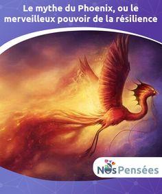 Le mythe du Phoenix, ou le merveilleux pouvoir de la résilience  Carl Gustav Jung nous a expliqué dans son livre intitulé #Métamorphoses de l'âme et ses symboles que l'être humain et le Phoenix présentent de nombreuses #similitudes. Cette créature de feu emblématique capable de renaître majestueusement de ses cendres symbolise aussi le pouvoir de la #résilience,   #Psychologie
