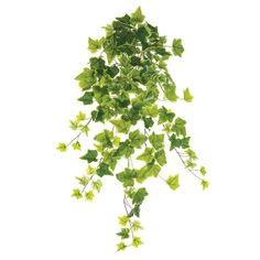 28'' Pale green ivy bush Green Plants, Artificial Plants, Houseplants, Ivy, Decoration, Ellie Saab, Nature, Pots, Products