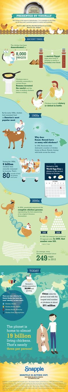 Infographic Presented by Visually   The Chicken