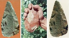 Παλαιολιθική εποχή - Ενότητα 7 - Η εποχή του λίθου Animals, Animales, Animaux, Animal, Animais
