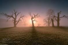 Morning light by januszblasz via http://ift.tt/2oJ113R