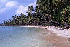 Koh Samui Island beach scene, Thailand     >>> http://search.topthailandhotels.com/City/Koh_Samui.htm