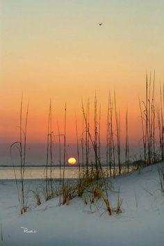 Sunset on the beach, Pensacola, Florida. Photo by Richard Roselli. Beautiful Sunset, Beautiful Beaches, Beautiful World, Beautiful Moments, Beach Foto, Pensacola Beach, I Love The Beach, All Nature, Jolie Photo