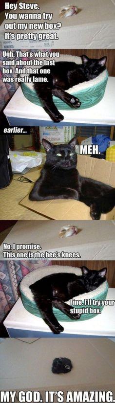 I laughed way too hard at this.
