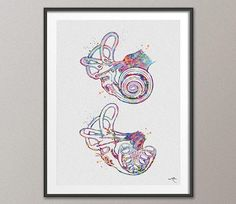 Cochlea of Inner Ear Anatomy Watercolor Print Audiologist Gift