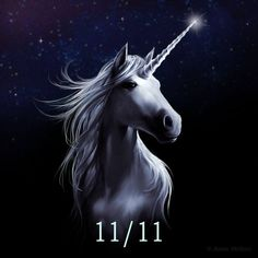 Anne Stokes, Unicorn Pictures, Horses, Pegasus, Unicorns, Artwork, Animals, Digital Art Fantasy, Fantasy Illustration