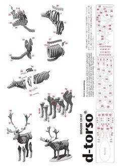 d-torso animal - Recherche Google