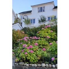 Norway, Outdoor Structures, Plants, Plant, Planets