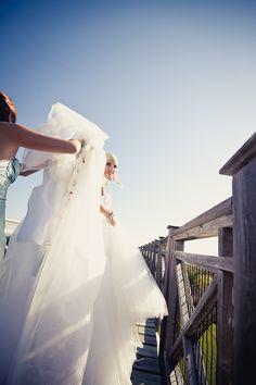 Wedding in Florida. One Shoulder Wedding Dress, Florida, Wedding Photography, Pop, Wedding Dresses, Wedding Shot, Bride Dresses, Popular, Pop Music