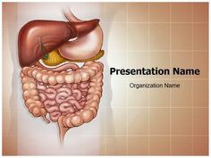 Abdominal Compartment Syndrome Powerpoint Template is one of the best PowerPoint templates by EditableTemplates.com. #EditableTemplates #PowerPoint #Descending Colon #Abdominal Compartment Syndrome #Medical Illustration #Biology #Health #Human Anatomy #Small Bowel #Human #Sigmoid Colon #Abdominal #Torso #Abdomen #Concentration #Large Intestine #Liver #Anus #Illness #Rectum #Ascending Colon #Care Body #Small Intestine #Medical #Trachea #Cecum #Education #Science #Large Bowel