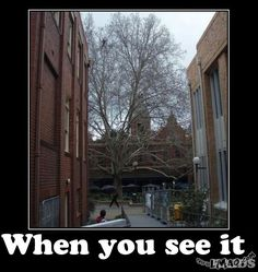 Hahaha, OMG look at this when you see it - climber | #when you see it, #climber, #funny