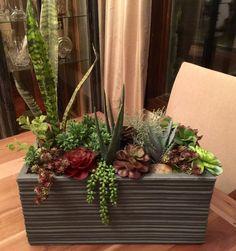 Modern Day Oversized Succulent Arrangement