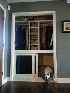 Built in dog crate with a small shelving system in coat closet