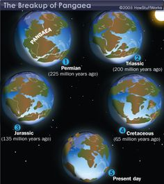 Printables Before Pangea, Rodinia Worksheet Answers pangaea looks like a pretty accurate version of what the earths science how did super continent become seven separate continents howstuffworks