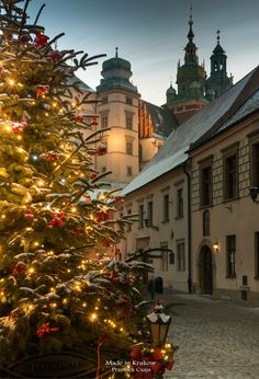Travel Pictures, Travel Pics, Krakow Poland, The Beautiful Country, Old City, Places To Go, Europe, Seasons, Photo And Video