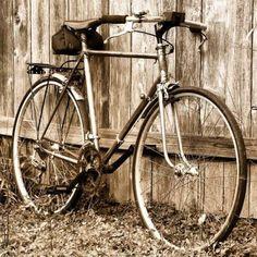 Bike Tourings