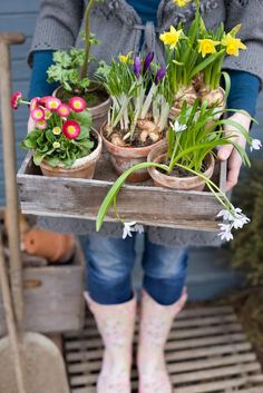 creative gardener... just love this picture...
