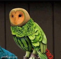 Owl Food Art Pictures, Photos, and Images for Facebook, Tumblr, Pinterest, and Twitter Pinterest