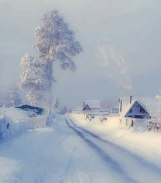 Shared by Find images and videos about white, winter and snow on We Heart It - the app to get lost in what you love. Winter Szenen, Winter Love, Winter Magic, Winter White, Winter Christmas, Snow White, Christmas Feeling, Winter Wonderland, Snow Scenes