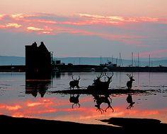 Lochranza,Isle of Arran  ....Island hopped through here some years ago.  Breath-taking scenery....