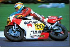 Graziano Rossi, Marlboro Belgarda-Yamaha TZ500, 1982 FIM 500cc World Championship