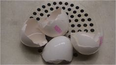 16 Amazing Uses For Eggshells That Will Absolutely Surprise You