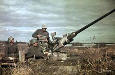 Finnish Bofors 40 mm AA-Gun in Position