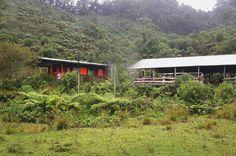 Icesi inaugura estación biológica en la vereda El Pato, corregimiento de La Leonera  www.CityCali.com