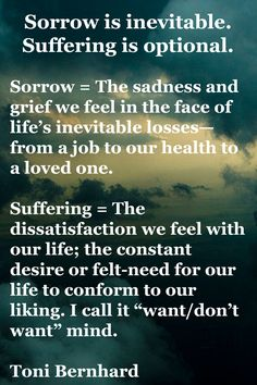 Sorrow is inevitable. Suffering is optional.